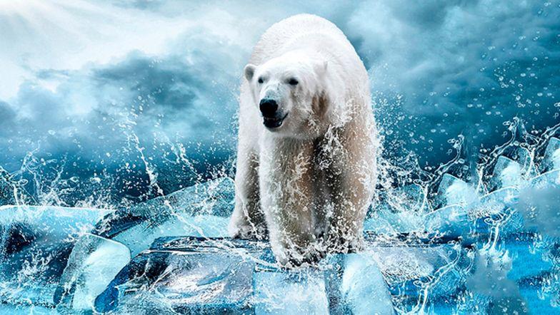 Klimaforandringer